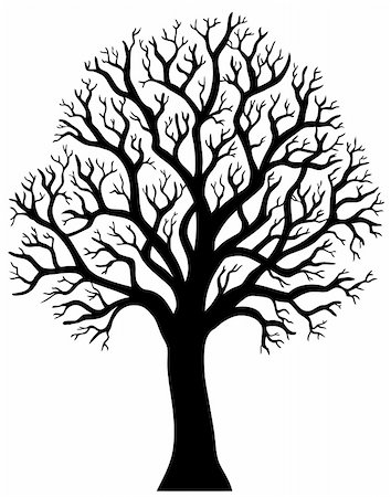 Silhouette of tree without leaf 2 - vector illustration. Stock Photo - Budget Royalty-Free & Subscription, Code: 400-04783959