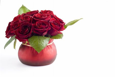 dozen roses - Beautiful roses in the red pot over white background Stock Photo - Budget Royalty-Free & Subscription, Code: 400-04805635