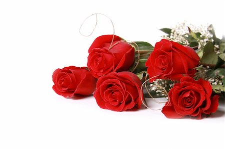 dozen roses - Beautiful red roses on a white background with space for copy. Stock Photo - Budget Royalty-Free & Subscription, Code: 400-04801751
