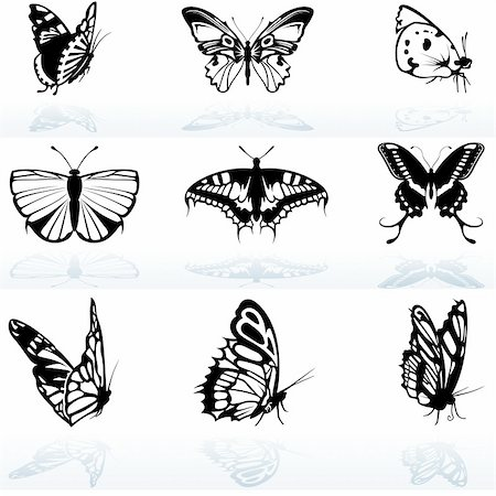 Butterfly Silhouettes - colored illustration, vector Stock Photo - Budget Royalty-Free & Subscription, Code: 400-04815296