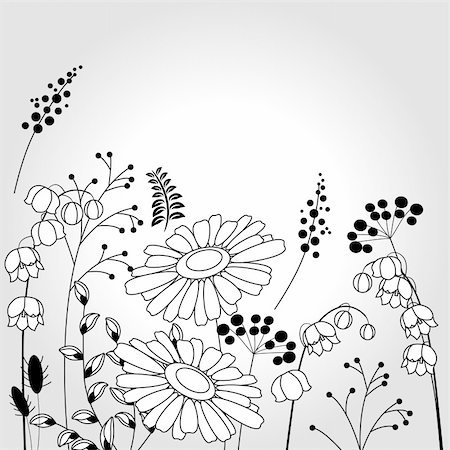 Light background with contour flowers and plants Stock Photo - Budget Royalty-Free & Subscription, Code: 400-04817014