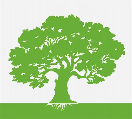 Tree vector illustration on green background art Stock Photo - Budget Royalty-Free & Subscription, Code: 400-04838867