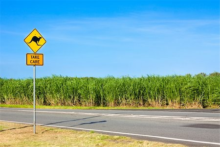 An Australian kangaroo warning sign on the side of a road Stock Photo - Budget Royalty-Free & Subscription, Code: 400-04831127