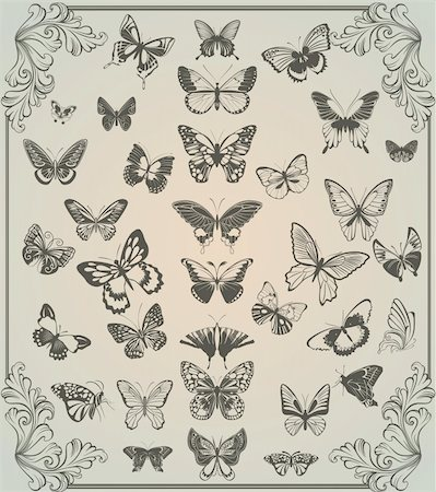 filigree - vintage stylized set of butterflies Stock Photo - Budget Royalty-Free & Subscription, Code: 400-04842230