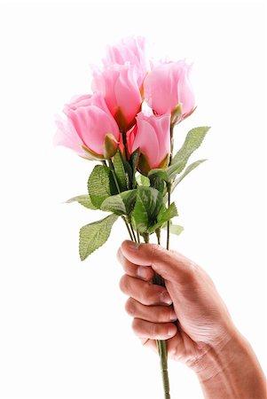 dozen roses - Hand Holding a Half Dozen Pink Roses Stock Photo - Budget Royalty-Free & Subscription, Code: 400-04843884