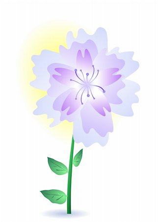 simsearch:400-04367215,k - Vector illustration of a purple summer flower Stock Photo - Budget Royalty-Free & Subscription, Code: 400-04859910