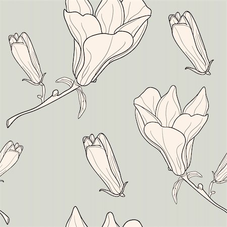 florist vector - Vector of grey seamless pattern with magnolias Stock Photo - Budget Royalty-Free & Subscription, Code: 400-04861064