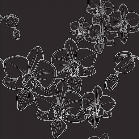 simsearch:400-04367215,k - Vector of black seamless pattern with orchid Stock Photo - Budget Royalty-Free & Subscription, Code: 400-04861065