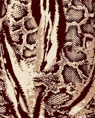 animal skin pattern Stock Photo - Budget Royalty-Free & Subscription, Code: 400-04873992
