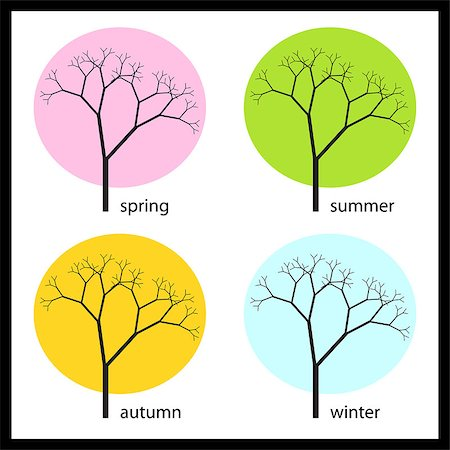 graphic vector illustration of tree in four seasons Stock Photo - Budget Royalty-Free & Subscription, Code: 400-04884821