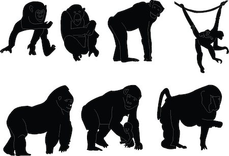 monkey silhouette collection - vector Stock Photo - Budget Royalty-Free & Subscription, Code: 400-04885995