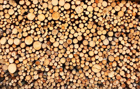 Pile of chopped fire wood prepared for winter Stock Photo - Budget Royalty-Free & Subscription, Code: 400-04882349