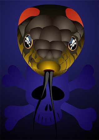 snake skin - Poisonous snake and skull and crossbones icon. The illustration on blue background. Stock Photo - Budget Royalty-Free & Subscription, Code: 400-04882684