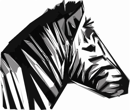 zebra head isolated on the white background Stock Photo - Budget Royalty-Free & Subscription, Code: 400-04900933