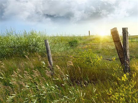 road landscape - Old country fence on the prairies in Saskatchewan Stock Photo - Budget Royalty-Free & Subscription, Code: 400-04916654