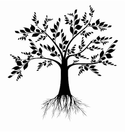 Beautiful art tree silhouette isolated on white background Stock Photo - Budget Royalty-Free & Subscription, Code: 400-04919077