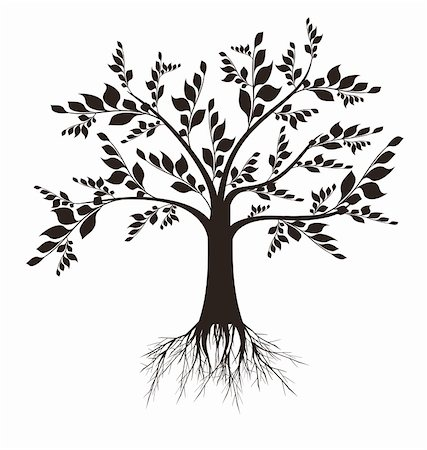Beautiful art tree silhouette isolated on white background Stock Photo - Budget Royalty-Free & Subscription, Code: 400-04919079