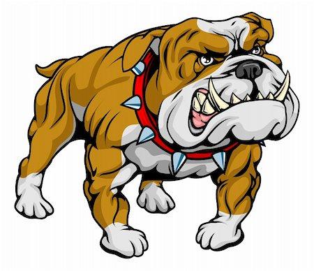 A cartoon very hard looking bulldog character. Stock Photo - Budget Royalty-Free & Subscription, Code: 400-04926269