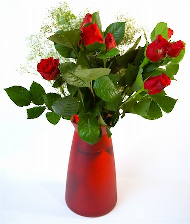 dozen roses - Vase of red roses against a white background Stock Photo - Budget Royalty-Free & Subscription, Code: 400-04939488