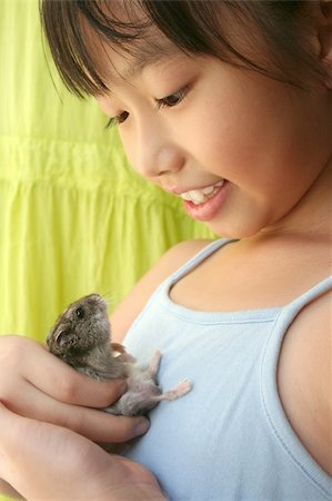 Girl smiling happily and playing with her grey pet hamster Stock Photo - Budget Royalty-Free & Subscription, Code: 400-04943911