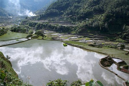 philippine terrace farming - rice terraces in northern luzon the philippines Stock Photo - Budget Royalty-Free & Subscription, Code: 400-04977139