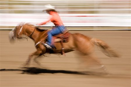 A horse galloping fast with a female rider -  motion blur. Stock Photo - Budget Royalty-Free & Subscription, Code: 400-05010898