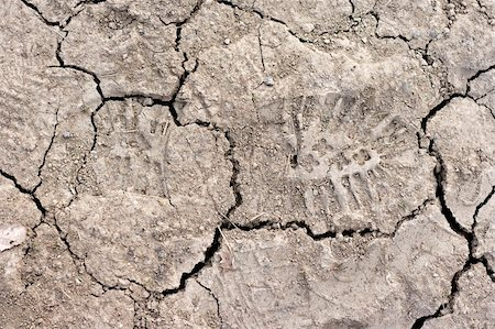 Close up of cracked dried soil with footprint Stock Photo - Budget Royalty-Free & Subscription, Code: 400-05059377