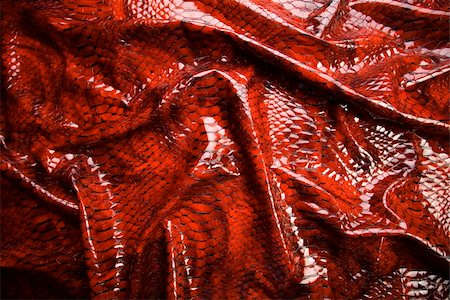 snake skin - Snakeskin texture - leather background Stock Photo - Budget Royalty-Free & Subscription, Code: 400-05075210