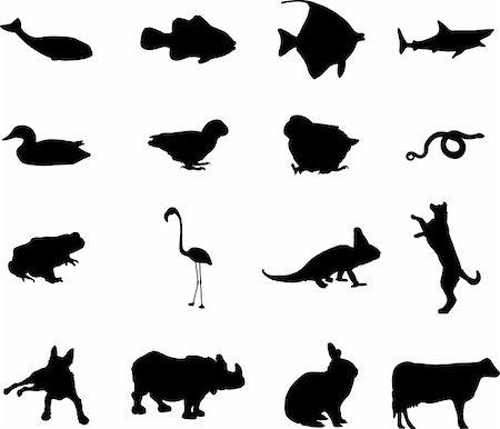 Animals. Set of 12 round vector buttons for web Stock Photo - Budget Royalty-Free & Subscription, Code: 400-05134520
