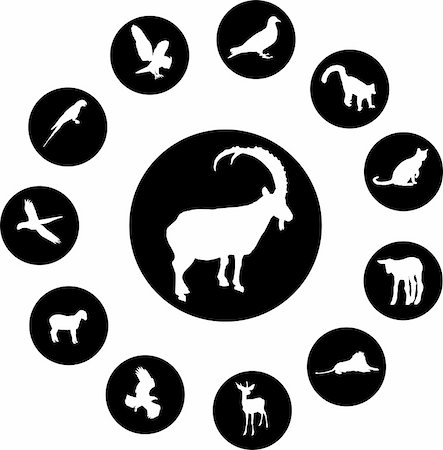 Animals. Set of 12 round vector buttons for web Stock Photo - Budget Royalty-Free & Subscription, Code: 400-05134531