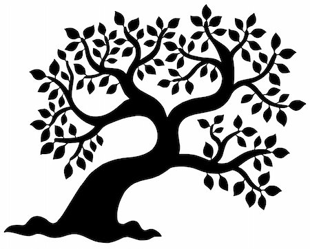 Leafy tree silhouette - vector illustration. Stock Photo - Budget Royalty-Free & Subscription, Code: 400-05138233