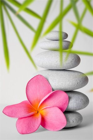 spanishalex (artist) - Stack of white pebbles and pink frangipani flower Stock Photo - Budget Royalty-Free & Subscription, Code: 400-05175968