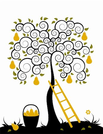 vector pear tree, ladder and basket of pears on white background, Adobe Illustrator 8 format Stock Photo - Budget Royalty-Free & Subscription, Code: 400-05195190