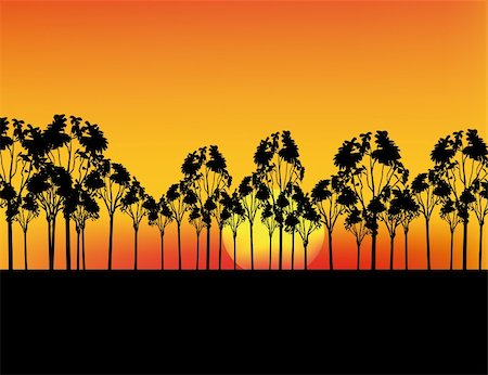 Nice sunset in Africa with red sky and silhouettes Stock Photo - Budget Royalty-Free & Subscription, Code: 400-05190366