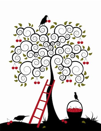 vector cherry tree, ladder, birds and basket of cherries on white background, Adobe Illustrator 8 format Stock Photo - Budget Royalty-Free & Subscription, Code: 400-05200231