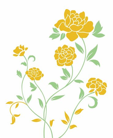 peony illustrations - drawing of yellow flower in a white background Stock Photo - Budget Royalty-Free & Subscription, Code: 400-05235276