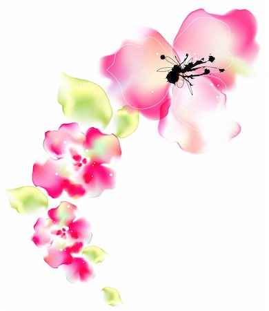 flower drawings black - illustration drawing of beautiful flower in a white background Stock Photo - Budget Royalty-Free & Subscription, Code: 400-05236306