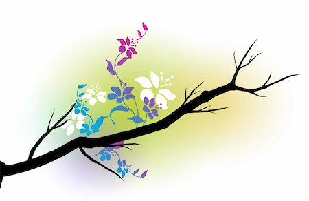 simsearch:400-04697977,k - illustration drawing of a branch of beautiful flower Stock Photo - Budget Royalty-Free & Subscription, Code: 400-05236580