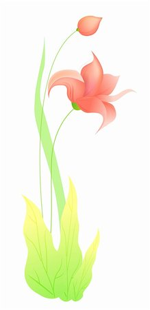 simsearch:400-04697977,k - drawing of beautiful flower in a white background Stock Photo - Budget Royalty-Free & Subscription, Code: 400-05238619