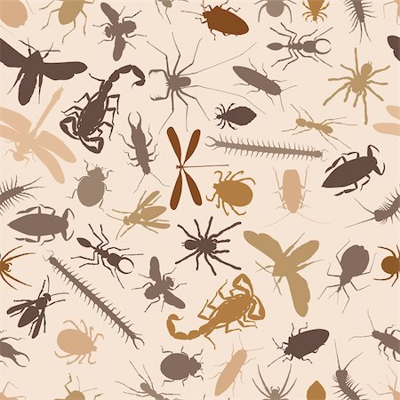 Editable vector seamless tile of various insects and other invertebrates Stock Photo - Budget Royalty-Free & Subscription, Code: 400-05246896