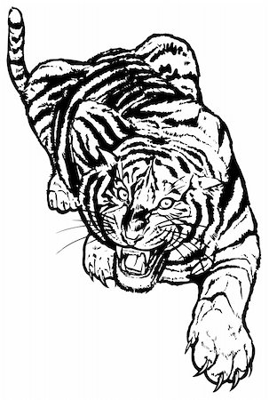 Vector abstract illustration. The white predatory tiger. Stock Photo - Budget Royalty-Free & Subscription, Code: 400-05250520