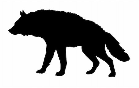 silhouette hyena isolated on white background Stock Photo - Budget Royalty-Free & Subscription, Code: 400-05253691