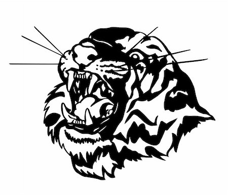 roar lion head picture - Head of an aggressive tiger. Vector illustration Stock Photo - Budget Royalty-Free & Subscription, Code: 400-05253814