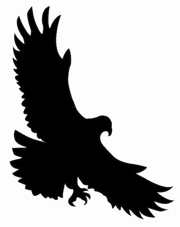 simsearch:400-04399778,k - vector silhouette of the ravenous bird on white background Stock Photo - Budget Royalty-Free & Subscription, Code: 400-05266779