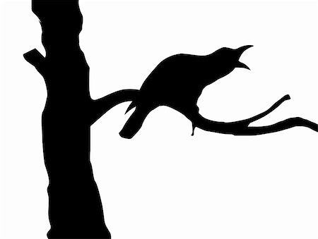 vector silhouette ravens on branch tree Stock Photo - Budget Royalty-Free & Subscription, Code: 400-05267213