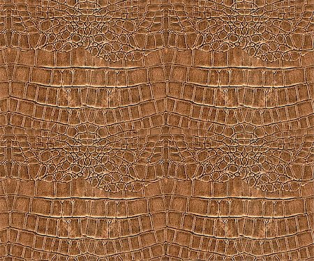 snake skin - Abstract background - skin Stock Photo - Budget Royalty-Free & Subscription, Code: 400-05268753