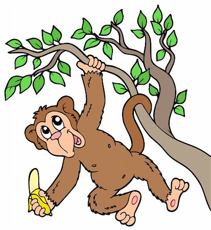 Monkey with banana on tree - vector illustration. Stock Photo - Budget Royalty-Free & Subscription, Code: 400-05286203