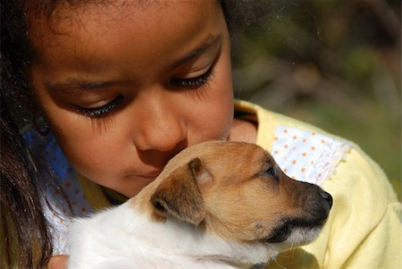dog kissing girl - little girl and her very young puppy jack russel terrier Stock Photo - Budget Royalty-Free & Subscription, Code: 400-05286304