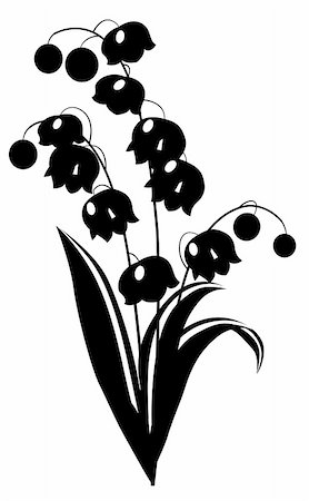 Stylized black and white flower on white background Stock Photo - Budget Royalty-Free & Subscription, Code: 400-05287409