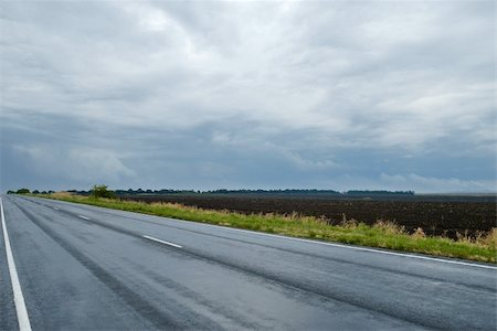 road landscape - landscape with a wet asphalt road Stock Photo - Budget Royalty-Free & Subscription, Code: 400-05298768